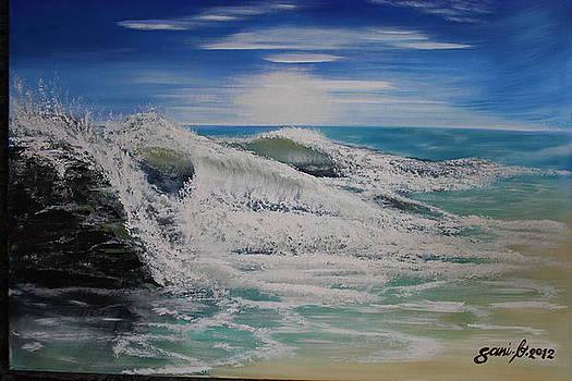 Northwind by Gani Banacia