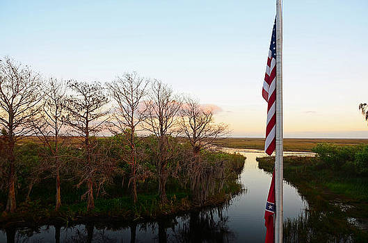 Old Glory and Cypress by Ken  Collette