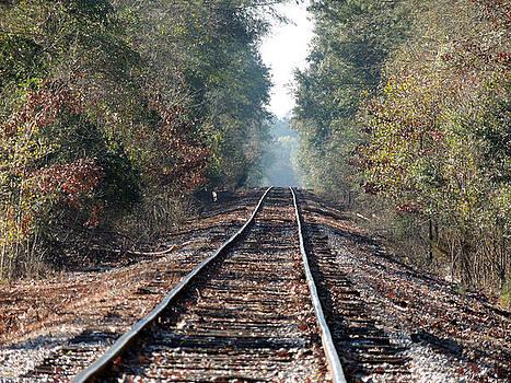 Old Southern Tracks by Kim Pate