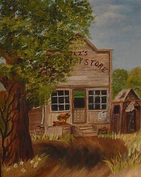 Old Time Country General  Store by Janis  Tafoya