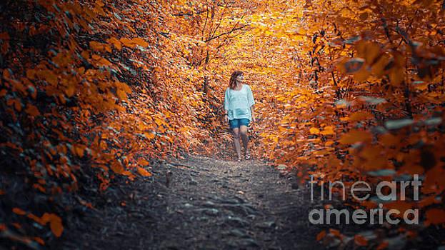 Orange Nature by John Jamriska