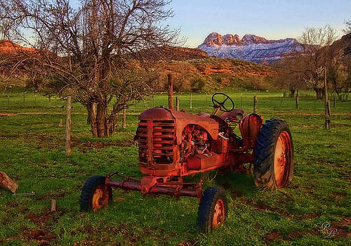 Out to Pasture by Rick Lewis