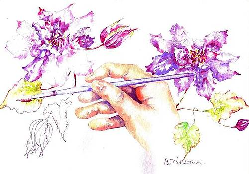 Painting clematis by Anne Dalton