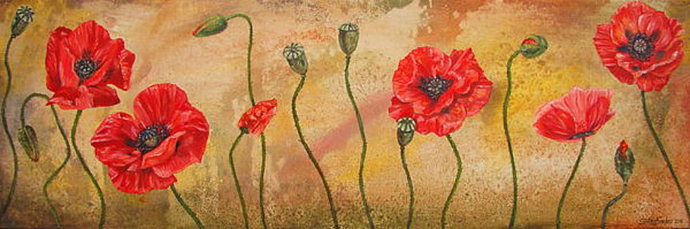 Poppies by Cynthia Snider