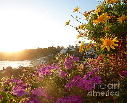 Portugal Sunset by Adrienne Franklin