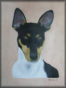 Rat Terrier by Vickie Sizemore