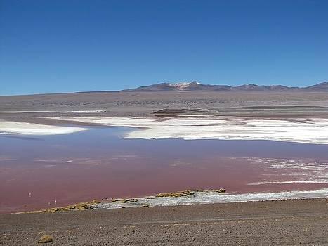 Red lagoon by Elizabeth Hardie