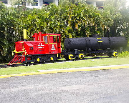 Red Train by Dick Willis