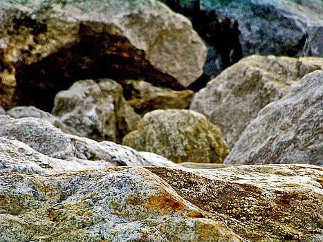 Rocks Along The Ocean by Lindsey Henderson