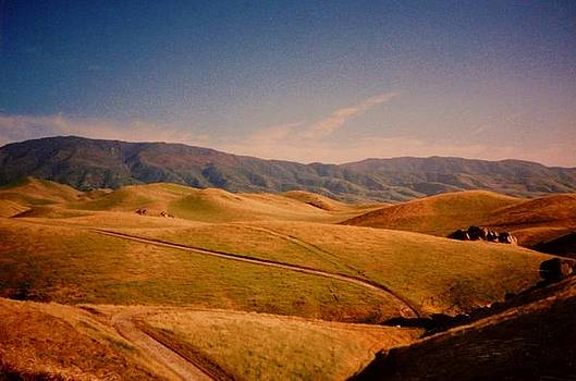 Rolling Sierras - Green and Gold by Jacquelyn Roberts
