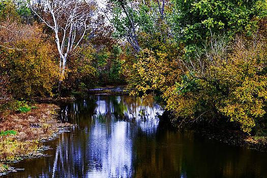 Salt River in Fall by Gene Linzy