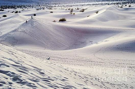Sand Dunes by Athena Lin