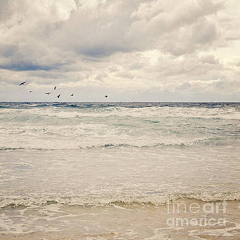 Seagulls take flight over the sea by Lyn Randle