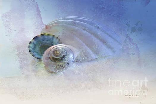 Seashell in Blue by Betty LaRue