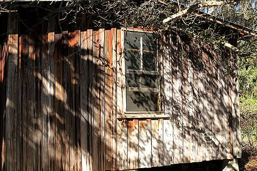 Shadows on a Cracker Cabin by Theresa Willingham