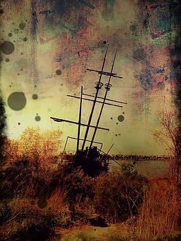 Shipwreck by Tracy Munson