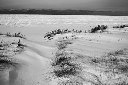 Snow on Lake Michigan by Steve Johnson