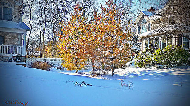 Snow Scene by Mikki Cucuzzo
