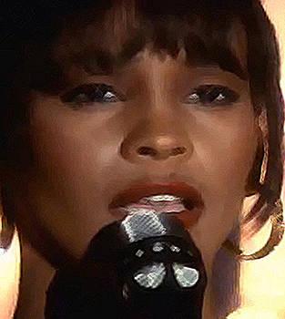 Song Bird Whitney Houston by De Beall