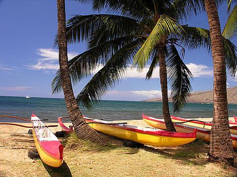 Southside Of Maui by Robert Lozen