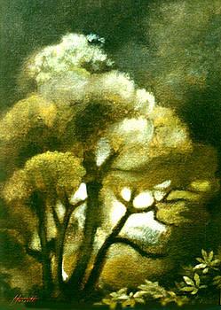 Spirit of the Tarairi Tree by Patricia Howitt