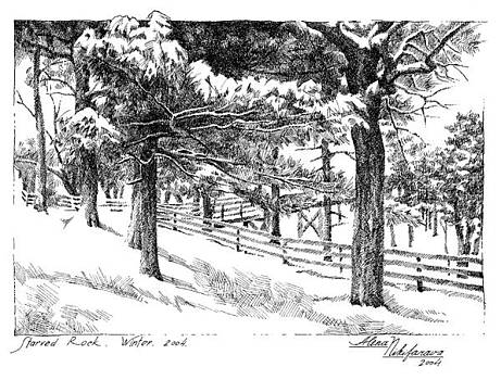Starved Rock Winter 2004. Stippling. by Alena Nikifarava