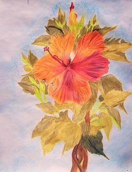 Summer Tropics by Janice W Deetscreek