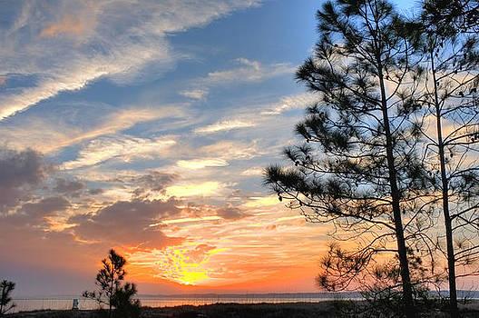 Sunset at Tower Beach by Bill LITTELL