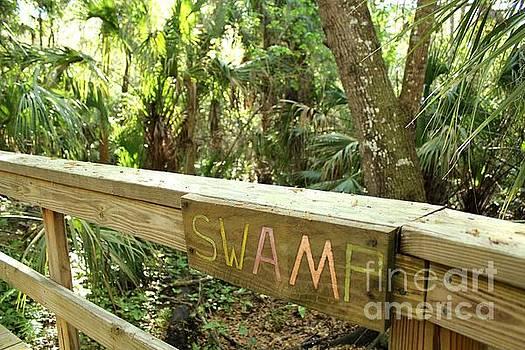 Swamp Ahead by Theresa Willingham