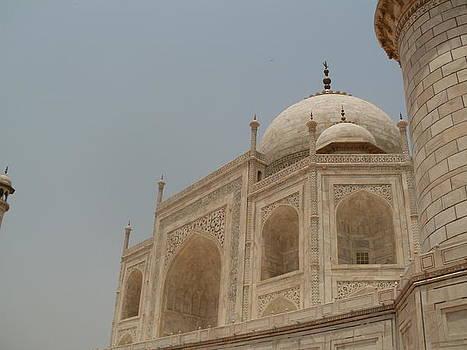 Taj Mahal  by Himani Goswami