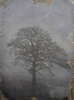 Talking Tree by Odd Jeppesen