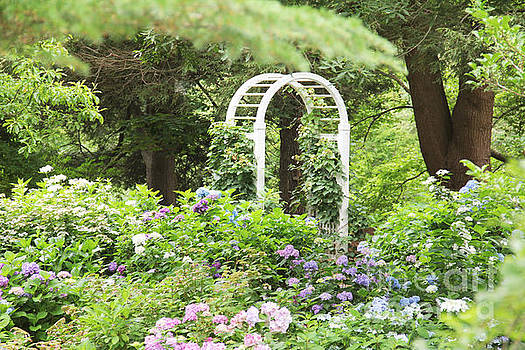 The Arbor by Rosemary Aubut