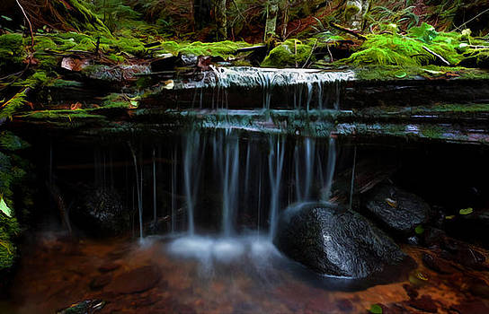 The Trickling Brook by Timothy Hack