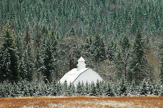 The White Barn by Annie Pflueger
