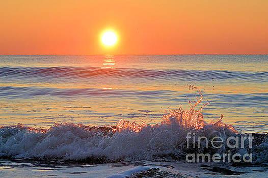We Danced Like A Wave On The Ocean by Dawne Dunton