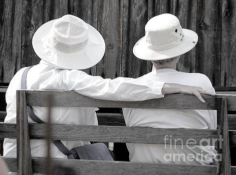 White Hats and Sunshine by Theresa Willingham