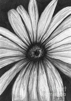 Wild Flower by J Ferwerda