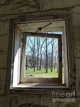 Window To The World by Jane Ford