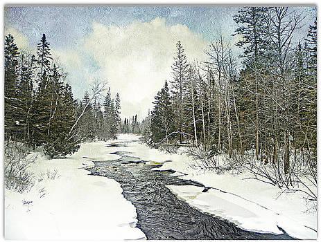 Winter Beauty  by Dianne  Lacourciere