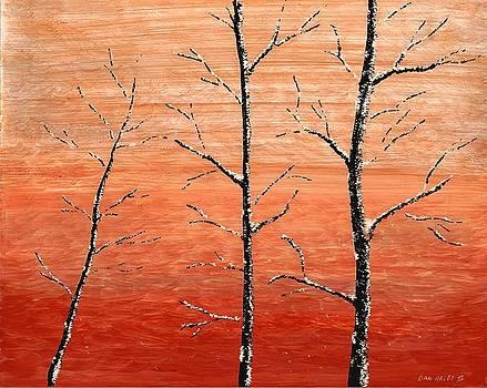 Winter Sunset by Dan Haley