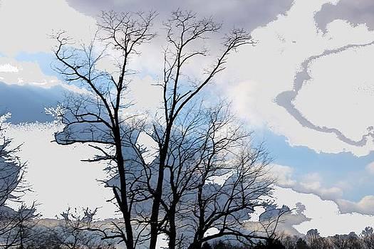 Winter Trees by Gary Pavlosky