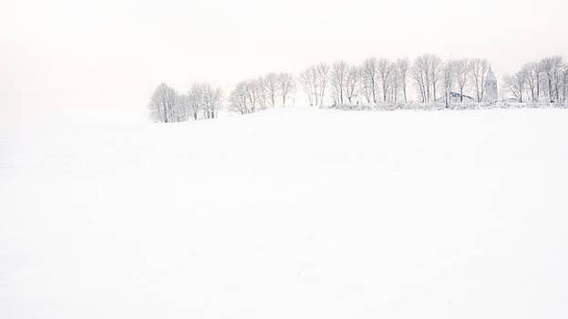 Winter Wonderland by Maurizio Incurvati