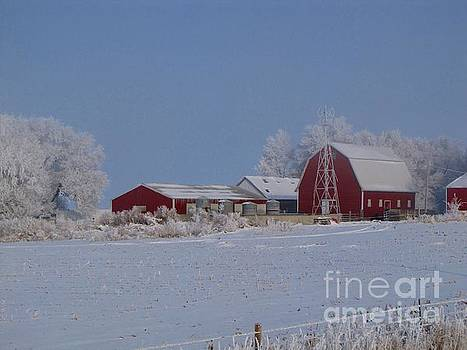 Winters Frosting by Laurie Wilcox