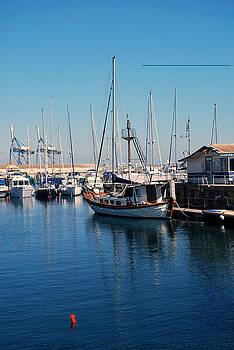 Yachts on dock by Ivelina Angelova