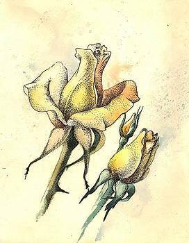 Yellow Roses in watercolor and stippling by Alena Nikifarava