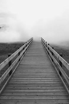 Yellowstone Boardwalk by David Yunker