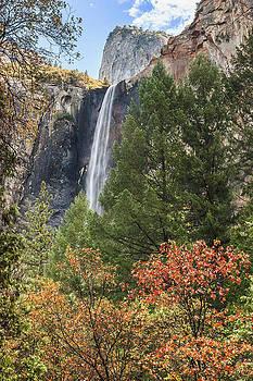 Yosemite by Muhie Kanawati