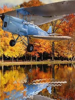Biplane Series by Sid Katragadda