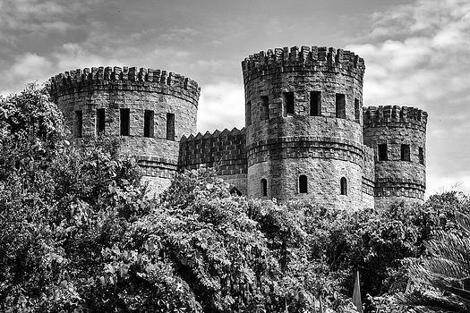 Lynn Palmer -  Castle Otttis