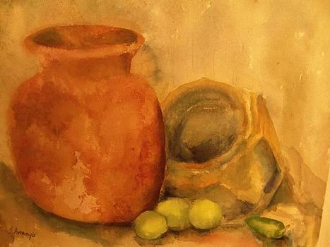 Crock  Pots by Beth Arroyo